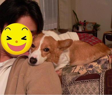 肩乗り犬2