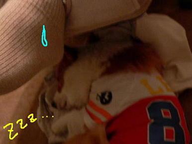 そんなところで寝てると・・・(1)(1)