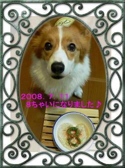 2008 8歳(1)