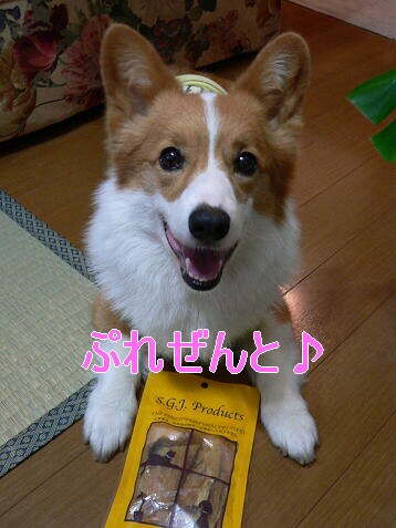 お誕生日プレゼント(1)