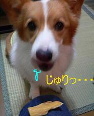 早く食わせれ・・・(2)
