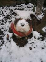 01.17 初雪 (1)
