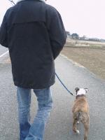 20日 パパと散歩 (2)