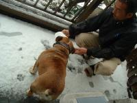 03日 雪遊び? (3)