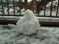 03日 雪