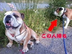 16日 お散歩 (2)