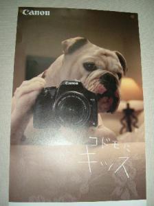 24日 ポスター