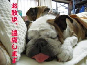 09日 寝ウメピン (5)