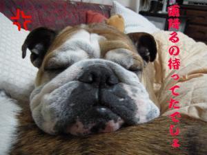 09日 寝ウメピン (1)