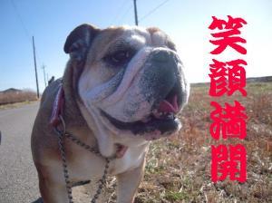 25日 お散歩 (10)