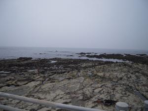 05日 海開き (2)