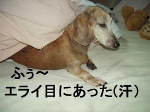 07日 寝起き大倉