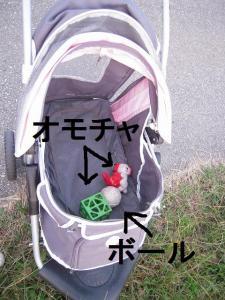30日 お散歩 (3)