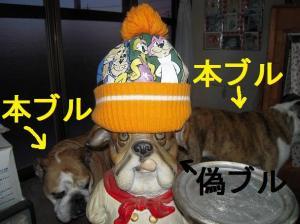 05日 ニット帽