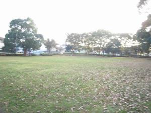 08日 公園お散歩 (4)