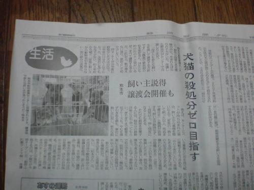 090615kumamoto.jpg