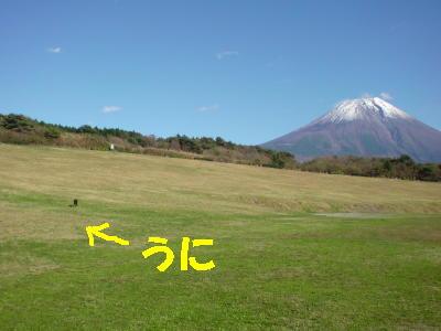 081119朝霧アリーナ9 (2)