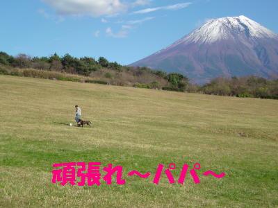 081119朝霧アリーナ13 (2)