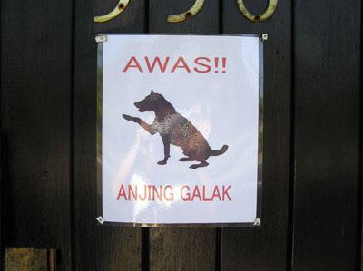 猛犬注意!