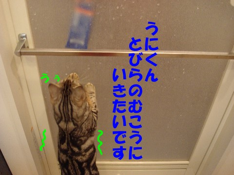 000084.jpg