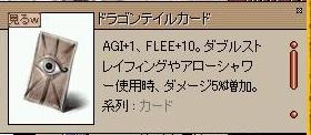 blog20051115-2.jpg