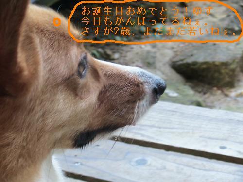 IMG_3128.jpg