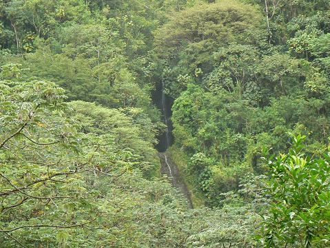 '08ハワイ 0627マノア滝ツアー:滝2・3段目