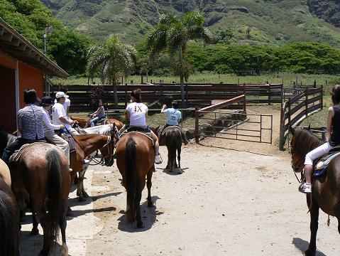 '08ハワイ 0628クアロア牧場:乗馬2