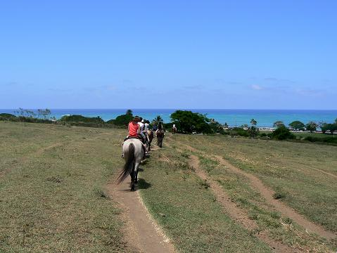 '08ハワイ 0628クアロア牧場:乗馬3