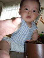2008_0703_094019.jpg