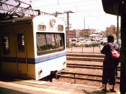 tenohiraSUNP0249.jpg