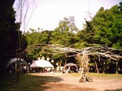 tenohiraSUNP0255.jpg
