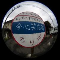 tobiDSC_3850.jpg