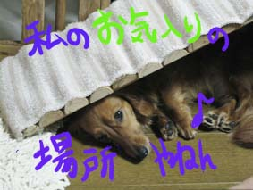 BLOG62801.jpg
