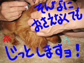 BLOG70103.jpg