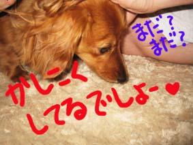 BLOG70104.jpg