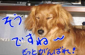 BLOG70702.jpg
