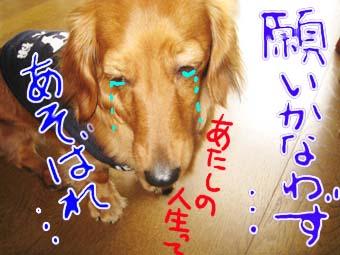 BLOG70802.jpg
