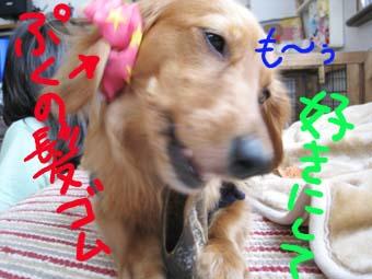 BLOG70805.jpg