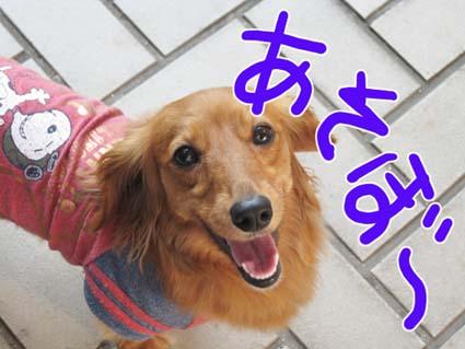 BLOG71001.jpg