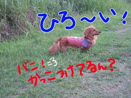 BLOG71101.jpg