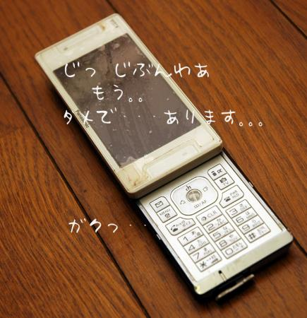 081121blog2.jpg