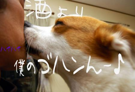 081202blog2.jpg