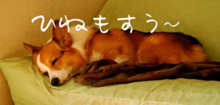 090207blog2.jpg