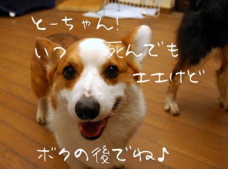 090310blog2.jpg