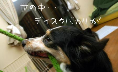 090313blog2.jpg