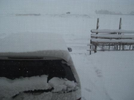 やれやれ雪や・・・