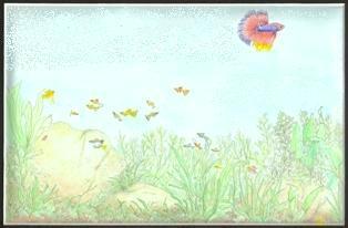 塗り絵 314-206px 2