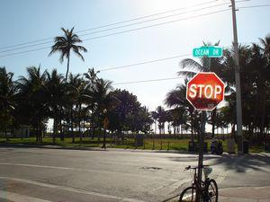 Ocean Drive1