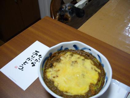 有田焼カレー25